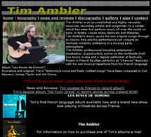 Tim Ambler Musician